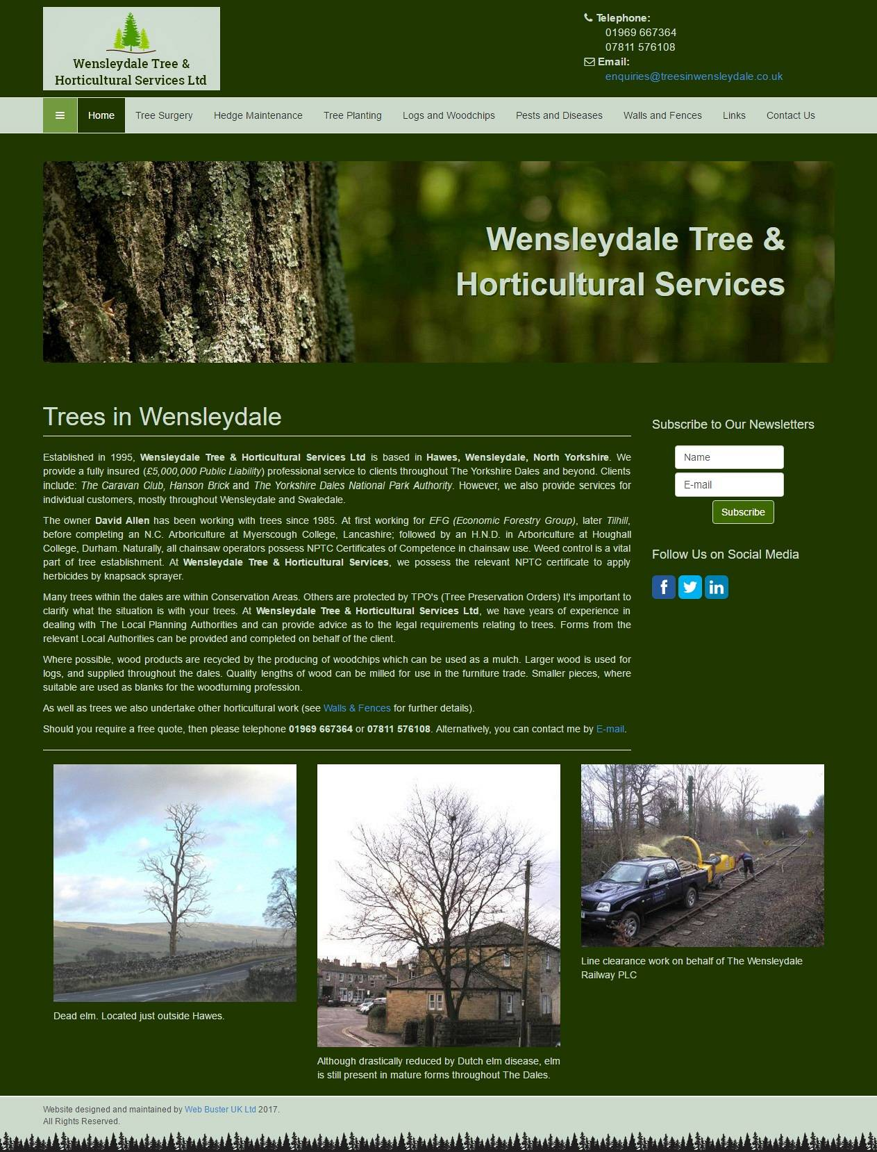 Trees in Wensleydale